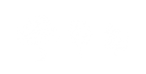 Colorado Springs Tree Removal Company